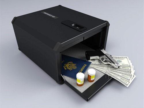 The 9g Products Biometric Fingerprint Safe